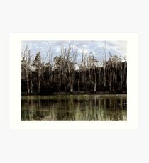 The Dead Forest Art Print
