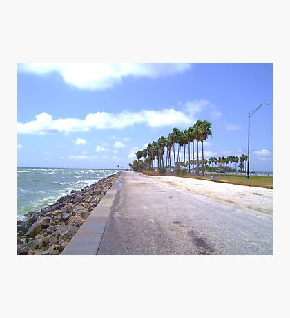 Causeway Breeze Photographic Print