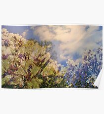 Cattus Island   /  Flowering Trees    Poster