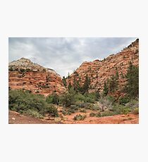 Zion Intrique Photographic Print