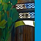 Wooden Gate with Wrought Iron by Linda Gregory