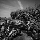 Shoreline by j.p. Howley