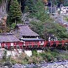 Magome Countryside, Japan by Patty Boyte