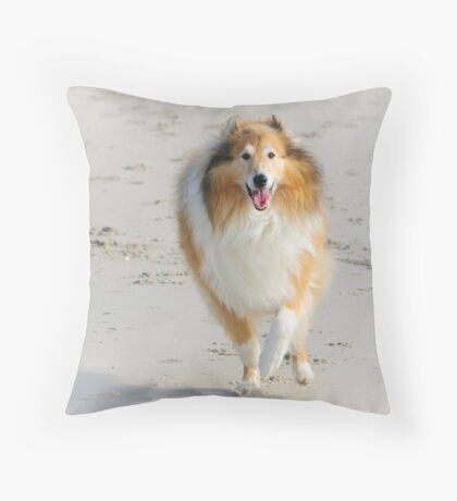 Dog Joy... Throw Pillow
