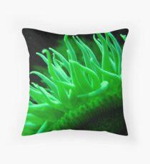 Sensory Throw Pillow