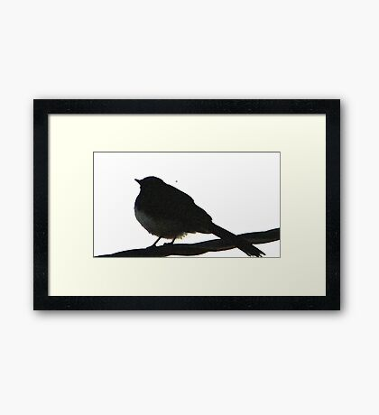 silhouette   (Willie Wagtail ) Framed Print
