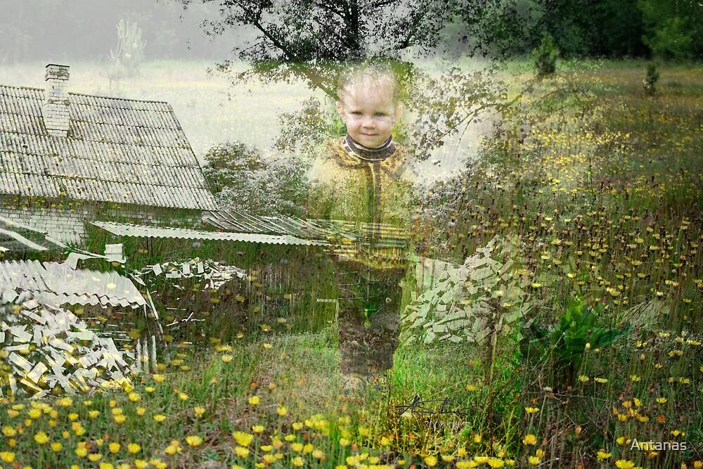 MEMORY OF DREAM by Antanas