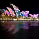 Vivid  Sydney by Alex Lau