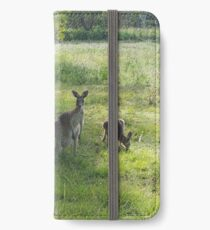 Kangaroos Queensland Australia iPhone Wallet/Case/Skin