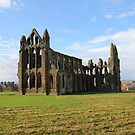 Whitby Abbey by Jonathan Cox