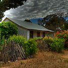 Miners Cottage by Santalum
