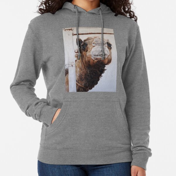 Betty and the Fence Lightweight Hoodie