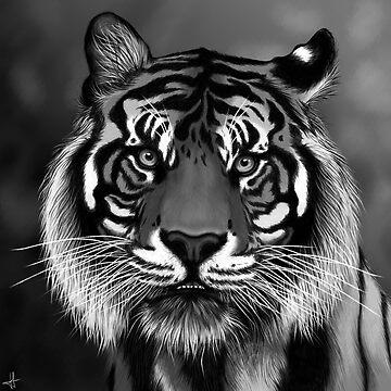 Tiger by Kanamey