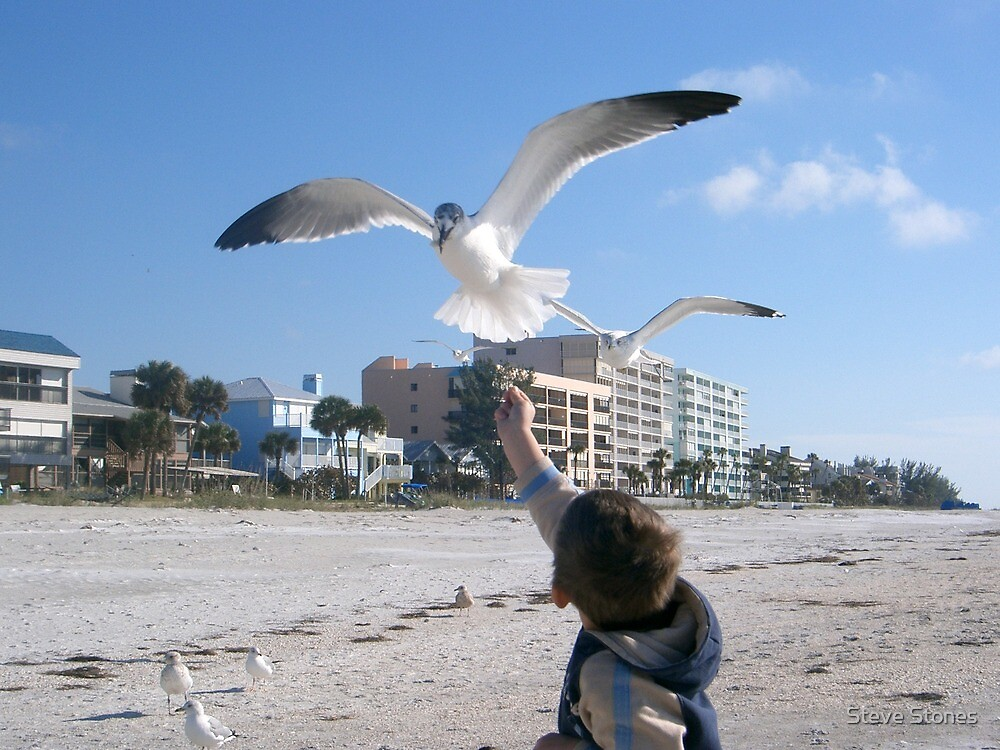 Boy and Bird by Steve Stones