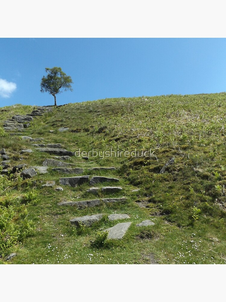 Steps to the sky by derbyshireduck