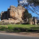 Mount Arapiles 1 by judygal
