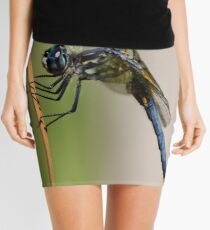 Profile of a Blue Dasher Mini Skirt