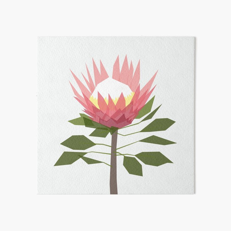 King Protea Art Board Print