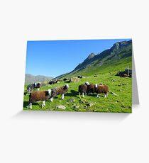 The Lake District: Herdwick Sheep & The Langdales. Greeting Card