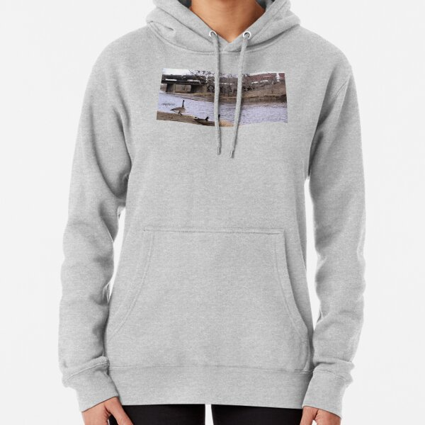 Canadian Geese & Trains in the Midwest Pullover Hoodie