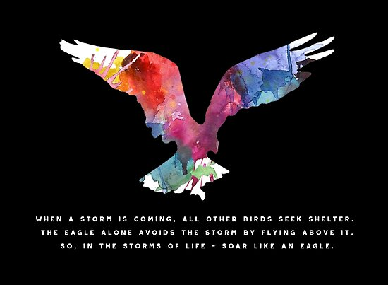 Inspirational Saying Quote Eagle Posters By Stylesyndikat
