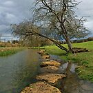 River Coln by RedHillDigital