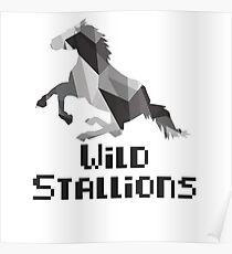 Wild Stallions  Poster