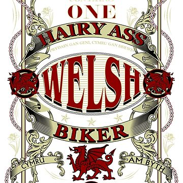Welsh Biker by limey57