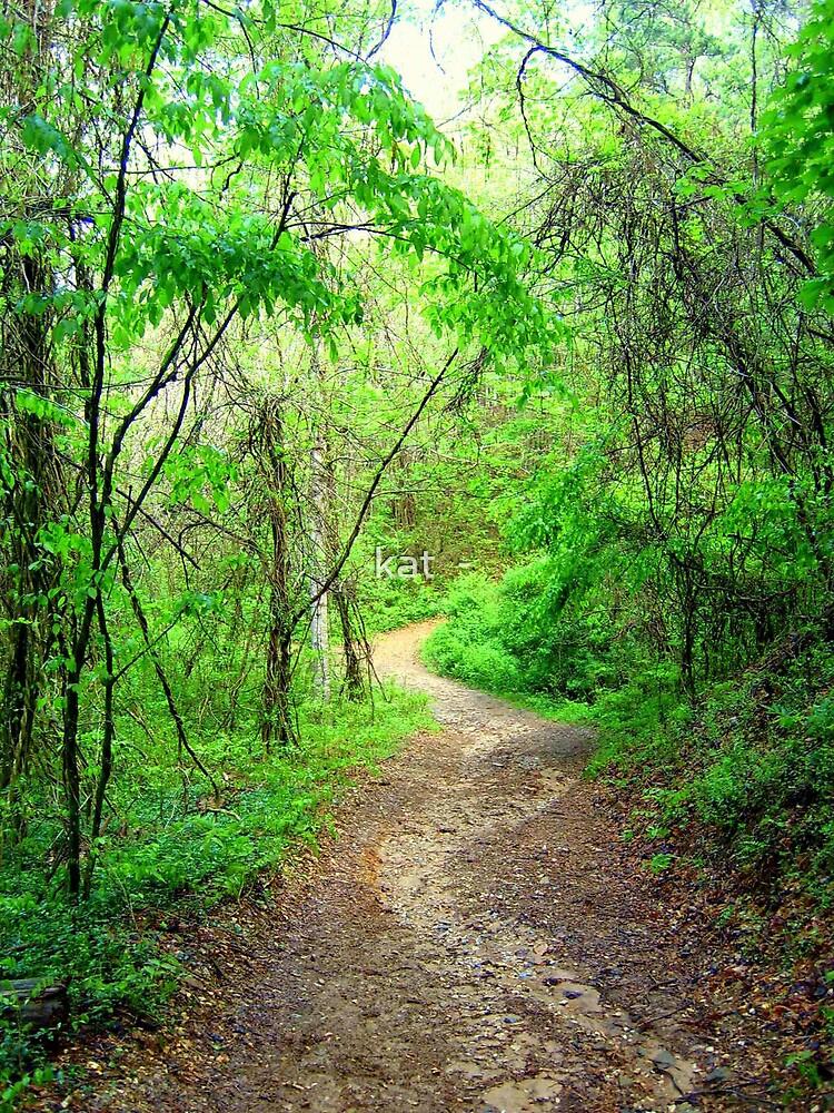 North Carolina trail by kat  -