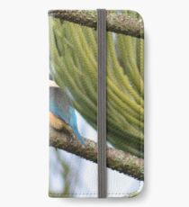 Kingfisher in the Norfolk Pine iPhone Wallet/Case/Skin