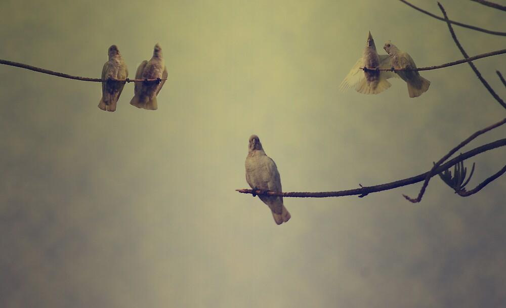 Untitled by aftan