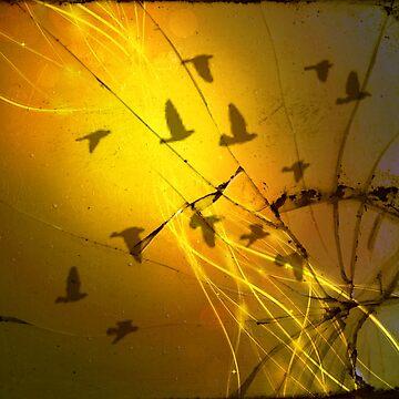 Birds Through the Toxic Dust by Happyhead64