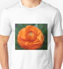 Orange Ranunculus Unisex T-Shirt