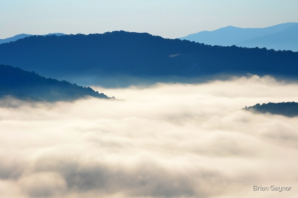 Morning Fog on the Blue Ridge Parkway by Brian Gaynor