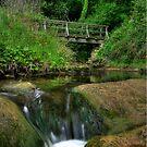 """""""Footbridge over the Hayburn"""" by Bradley Shawn  Rabon"""