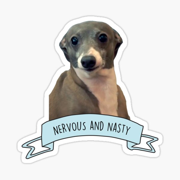 Kermit - Nervous and Nasty Sticker