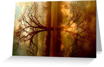 A Place To Reflect by Elizabeth Burton