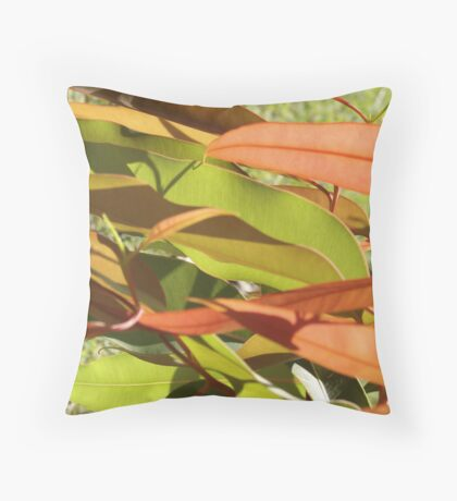 Colourful Gums Throw Pillow