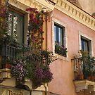 Balconies by Steve plowman