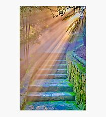 ...I saw before me a golden curtain and I climbed the stairs as if in a dream... Photographic Print