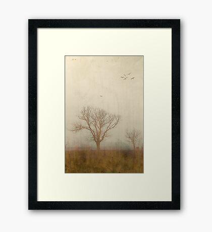 Fields of Moriac Framed Print