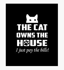 The Cat Owns The House Photographic Print