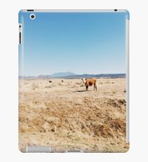 Arizona Cows  iPad Case/Skin