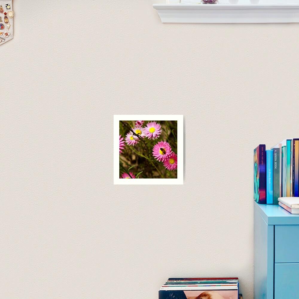 Bee on everlasting Art Print