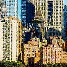 Lower West Side by Robert Meyer