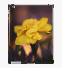 Steamboat Springs at Night #3 iPad Case/Skin