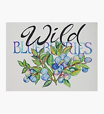Wild Blueberries  Photographic Print