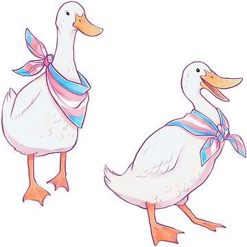 Trans Ducks Stickers by vainglory