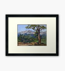Colorado Rocky Mountains Painting - Oil Framed Print