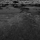 Where the water runs away... by Theresa Wall Duggan